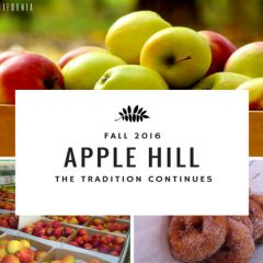 Apple Hill Road Trip